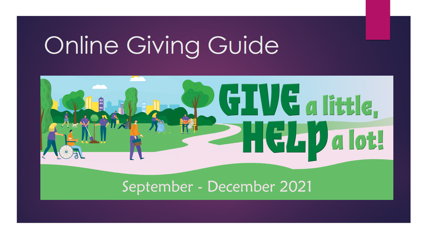 Online Donor Giving Guide