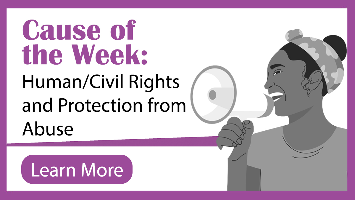 Human/Civil Rights and Protection from Abuse