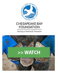 Chesapeake Bay Foundation, Inc.