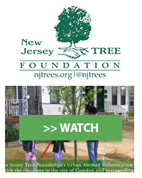 New Jersey Tree Foundation, Inc.